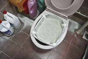 Cat litter over toilet bowl